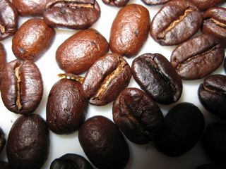 今日のコロンビア豆
