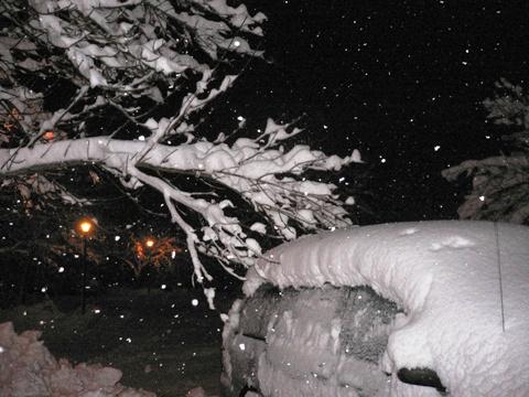 snowatorm3.jpg
