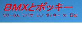 2_20110212154530.jpg