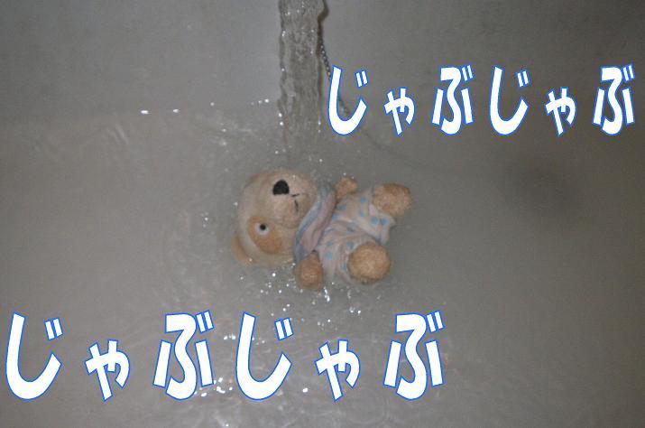 IMGP1697.jpg