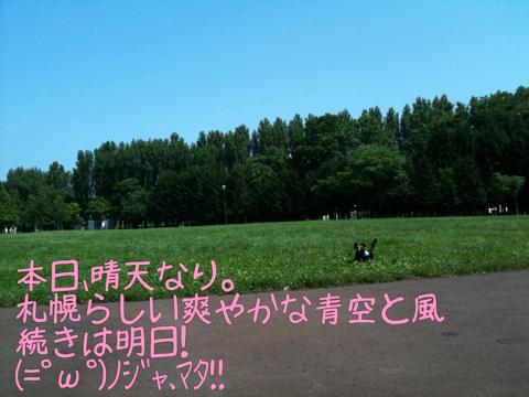 IMG_5969.jpg