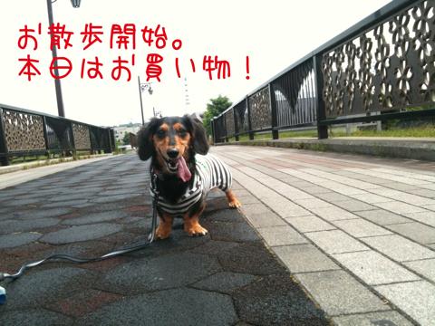 IMG_6210.jpg
