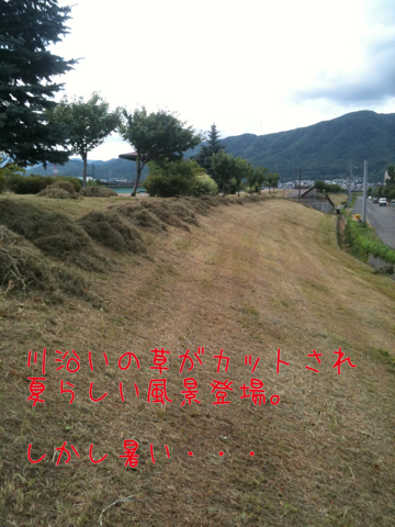 IMG_6575.jpg