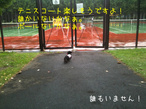 IMG_6589.jpg