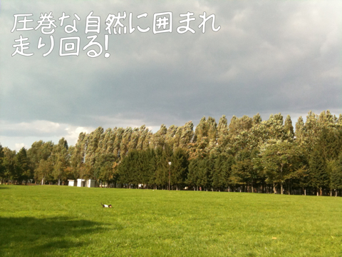 IMG_8515.jpg