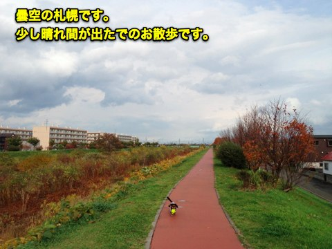IMG_9417-1.jpg