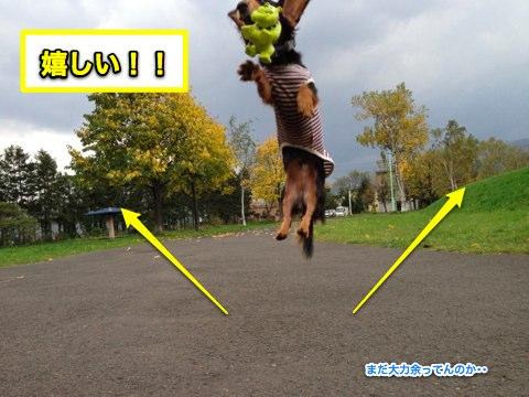 IMG_9435_20111026002008.jpg