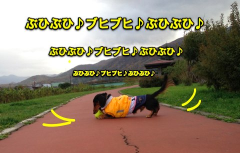 IMG_9475-2.jpg