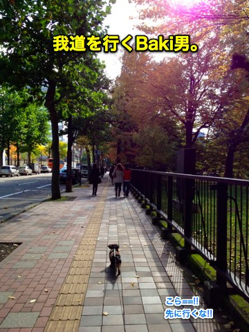 IMG_9528-2.jpg