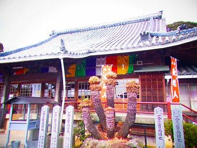 7寿老人 宝生寺