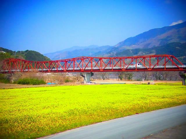 3大洲 河川敷