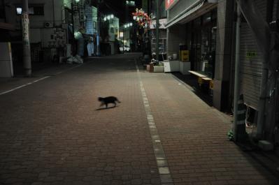 fujimarukajiwara1.jpg
