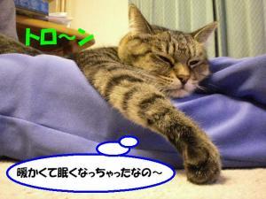 眠くルーク