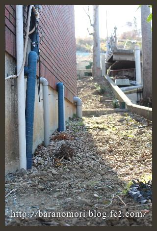 庭づくり 庭 裏庭 抜根