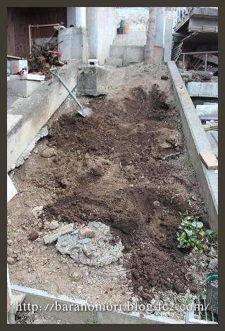庭づくり 裏庭