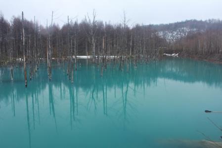 青い池_800