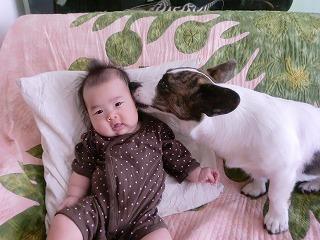 お耳で味見をするでし。byたまこ