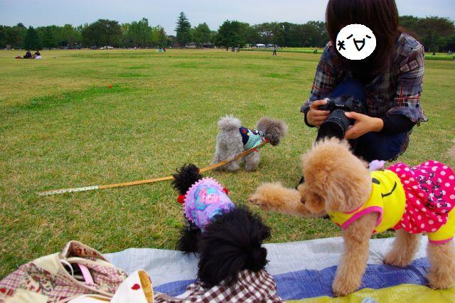 10.22昭和記念公園 1210