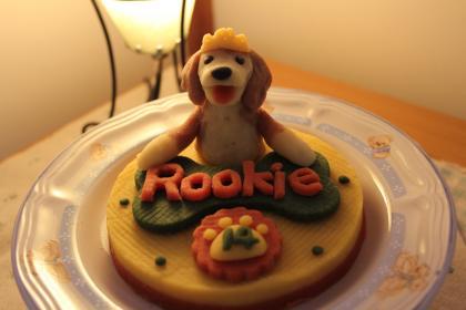 cake-0419-zentai.jpg