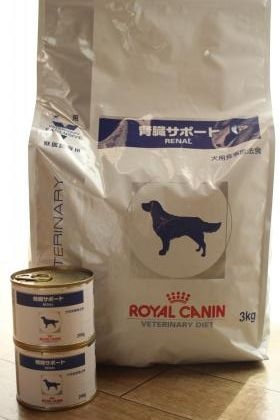 dogfood-0516.jpg