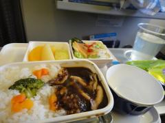 20110509 ジャカルタ飛行機内3