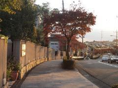 20101103 ご近所散歩1