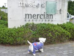 mercianmusee1.jpg