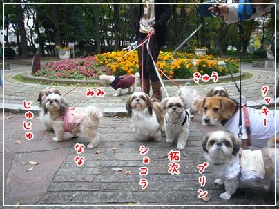 091122_mimifami_04.jpg