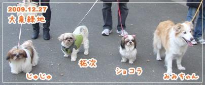 091227_oizumi_mi_08.jpg
