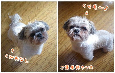 100117_takuta_04.jpg