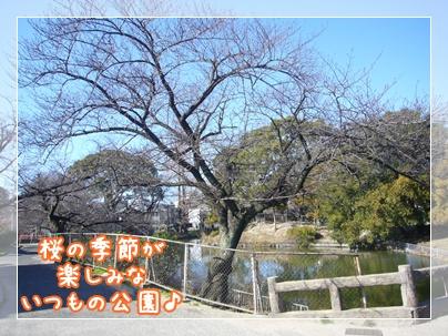 100124_misc1_03.jpg