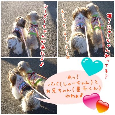 100124_misc2_04.jpg