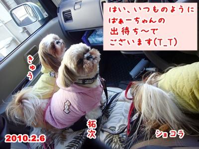 100206_homes_rian_01.jpg