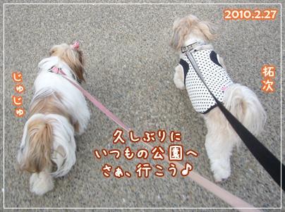 100227_birthday_p01.jpg