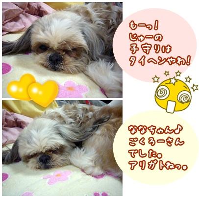 100318_jyujyu10_01.jpg