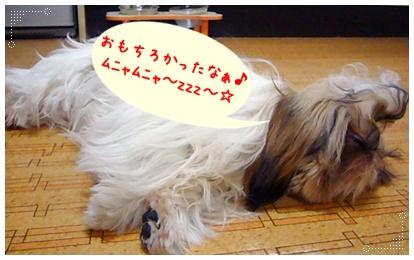 100318_jyujyu10_02.jpg