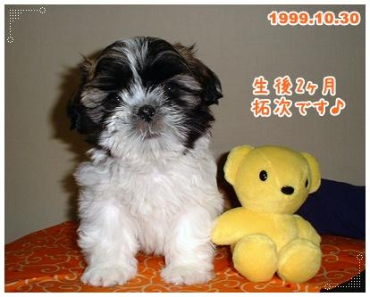 100401_1st_Aniv_01.jpg