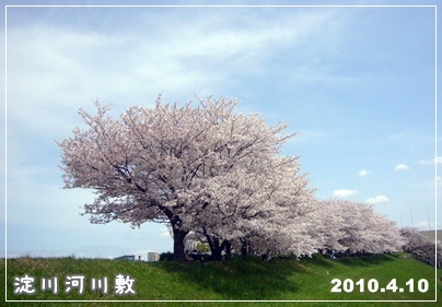 100410_yogogawa_01.jpg