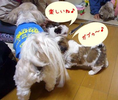 100418_a_boys_05.jpg