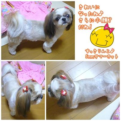 100426_q-chan_03.jpg