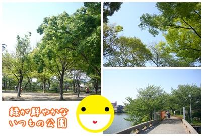 100429_showa_04.jpg