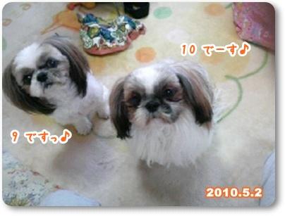 100502_qandj_01.jpg
