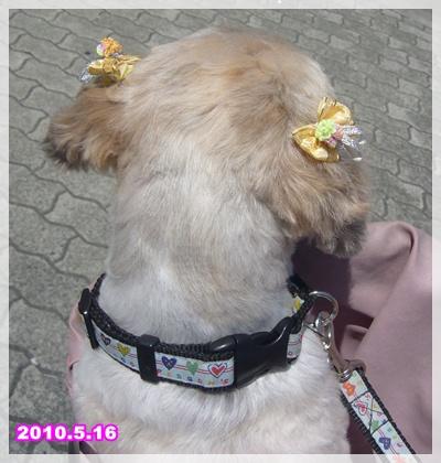 100516_taku_baby_ear_01.jpg