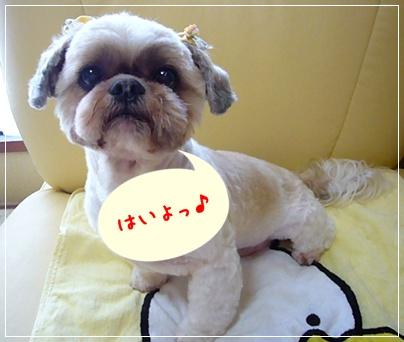 100516_taku_baby_ear_03.jpg