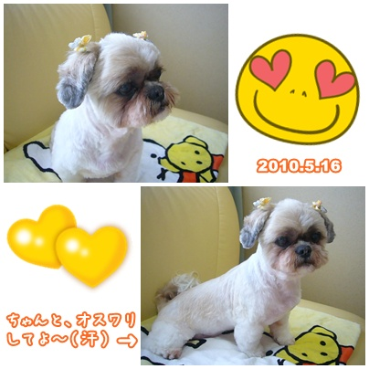 100516_taku_baby_ear_04.jpg