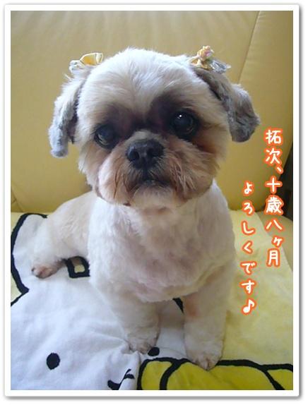 100516_taku_baby_ear_05.jpg