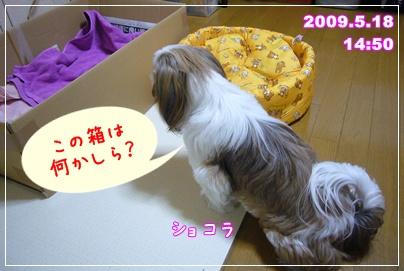 100518_juju_1stB_01.jpg