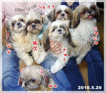 100530_q-chan_04.jpg