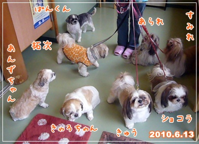 100613_wans_01.jpg