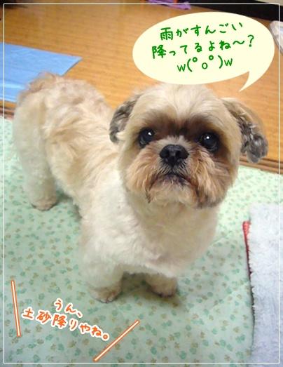 100618_takutaku_01.jpg